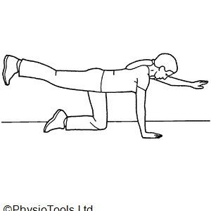 10 super spine exercises img 4