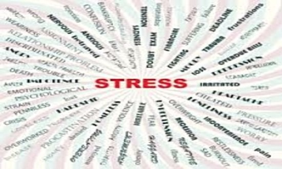 Stress, Back Pain & The House of Health img 2