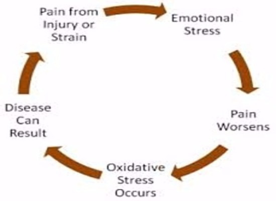 Stress, Back Pain & The House of Health img 4